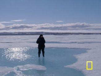 di Caprio on ice